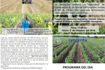 Agricultura Sustentable Maíz Temporal, El Vicario, Apaseo El Grande, Guanajuato