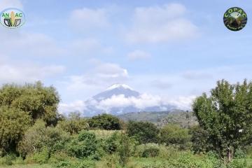 Agricultura Sustentable en las Faldas del Popocatépetl, Puebla