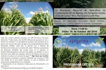 Agricultura Sustentable Maíz, en Apaseo el Grande, Guanajuato