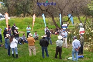 Senguio, Michoacán fué sede de Evento en Agricultura Sustentable Maíz Temporal.