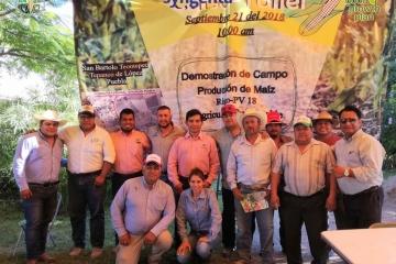 Experiencias en Agricultura Sustentable Maíz San Bartolo Teontepec, Tepanco de López, Puebla.