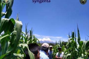 1 y 2 de agosto compartiendo experiencias en Agricultura Sustentable Puebla, México.